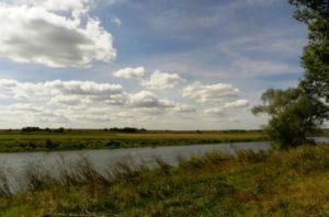 Экологи добились сохранения озера Круглого в Воронежской области