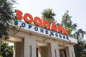 Многодетные семьи смогут бесплатно посетить воронежский зоопарк