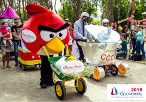 Лучшие практики «Добронежец-2018»: проект «Парад колясок»