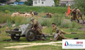 Лучшие практики «Добронежец-2018»: проект «Военно-историческая реконструкция «Каширский рубеж»
