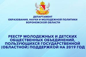Областной реестр молодежных и детских общественных объединений, пользующихся государственной (областной) поддержкой на 2019 год