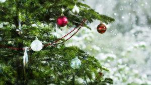 В Воронежском центральном парке состоится открытие новогодней ёлки