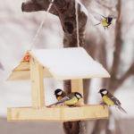 Все желающие могут поучаствовать во флешмобе «Хранители птиц»