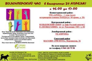 Фонд «Право на жизнь» приглашает всех желающих на волонтёрский час