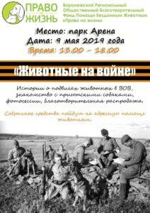 Воронежцев приглашают узнать о подвигах животных во время Великой Отечественной Войны