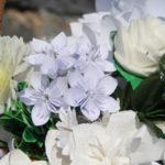 Воспитанники воронежского «Паруса надежды» примут участие В акции «Белый цветок» в Москве