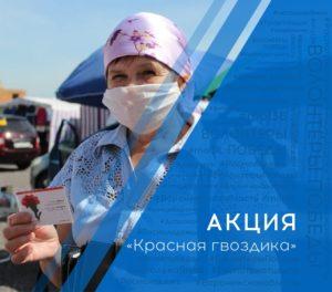 В 12 муниципальных образованиях Воронежской области запущена акция «Красная гвоздика»